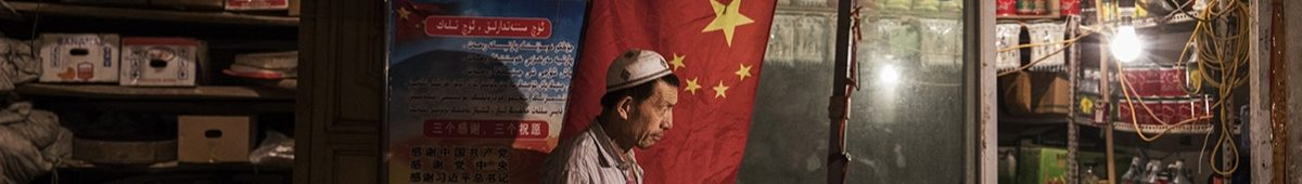How China is crushing the Uighurs | The Economist